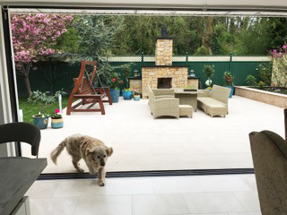 Home extension in Kildare - dog on patio area
